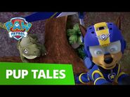 PAW Patrol - Pups Save the Gliding Turbots - PAW Patrol Official & Friends!