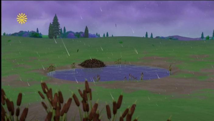 Farmer Yumi's pond/Gallery