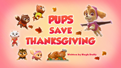 Pups Save Thanksgiving (HQ).png