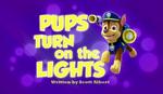 Pups Turn on the Lights