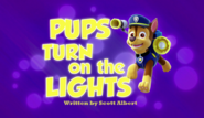 Pups Turn on the Lights