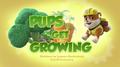 Pups Get Growing (HQ)
