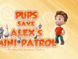 Pups Save Alex's Mini-Patrol