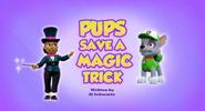 Pups Save a Magic Trick (HQ)