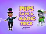 Pups Save a Magic Trick
