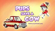 Pups Save a Cow