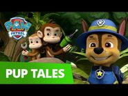PAW Patrol - Pups Save Carlos from a Jungle Gym! - Rescue Episode - PAW Patrol Official & Friends!