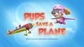 PAW Patrol Pups Save a Plane Title Card