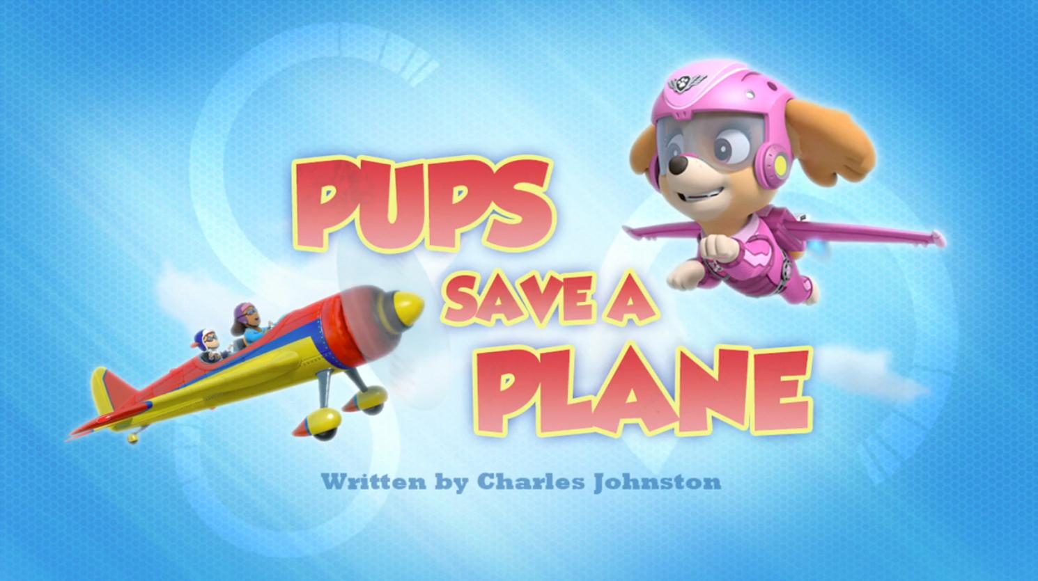 Pups Save a Plane