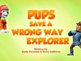 Pups Save a Wrong Way Explorer