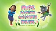 Pups Save the Mayor's Tulips (HQ)