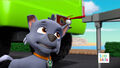 PAW Patrol Pups Save the Critters Rocky 1