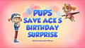 Pups Save Ace's Birthday Surprise (HQ)