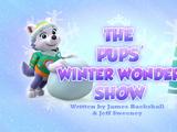 The Pups' Winter Wonder Show