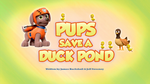 Pups Save a Duck Pond (HQ)