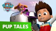 PAW Patrol Pups Save a Soapbox Derby Rescue Episode PAW Patrol Official & Friends!