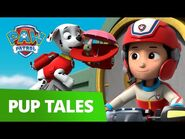 PAW Patrol - Pups Save The Mural! - Rescue Episode - PAW Patrol Official & Friends!