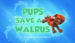 Pups Save a Walrus
