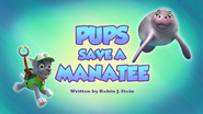 Pups Save a Manatee (HQ)