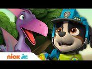 PAW Patrol Pups Rescue Pterodactyl Dino! - Nick Jr.