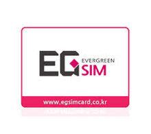 EG SIM.jpg