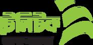 Bangladeshi Teletalk SIM Card