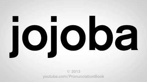 How to Pronounce Jojoba