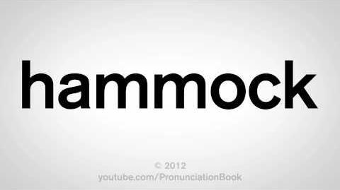 How_to_Pronounce_Hammock