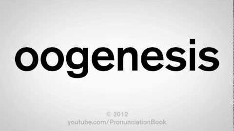 How_to_Pronounce_Oogenesis