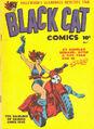 Black Cat -1
