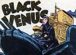 Black Venus.jpg
