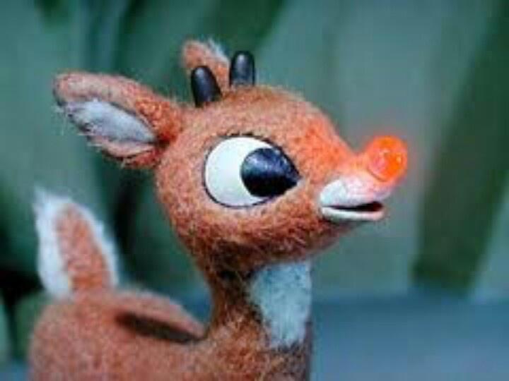 Santa's 9th Reindeer
