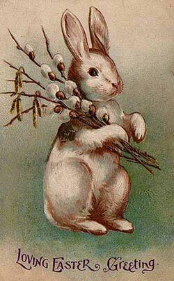 Easter Bunny Postcard 1907.jpg