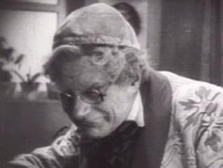Professor Bulwer