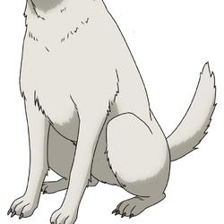 Dog anime design.png