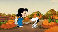 Lucy rewards Snoopy a pumpkin pie after composting helps to transform into a pumpkin garden