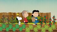 Linus and Lucy is proud at her garden grown with vegetables done by them