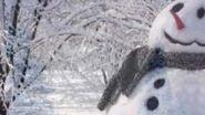 Frostycrop