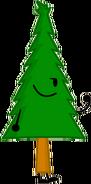 Pine Tree 1