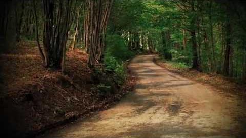 Morpheus Road The Light trailer