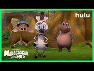 Madagascar- A Little Wild -Season 2 Trailer (Official) • A Hulu Original