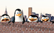 Madagascar Penguins Poster