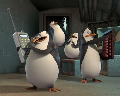 PenguinHQ4.jpg