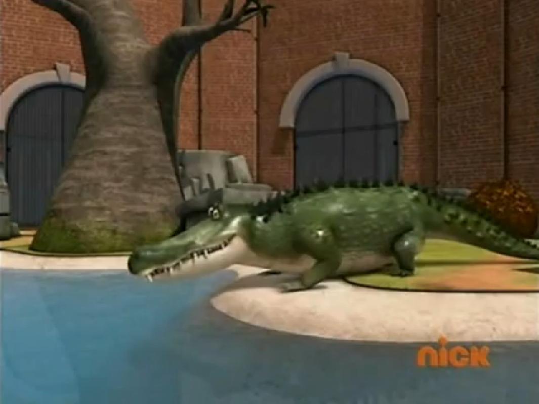 Alligator Habitat