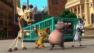 Zoo-Crew-Dancing