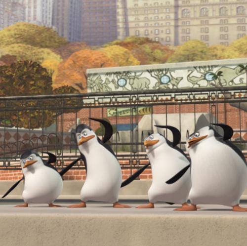 Penguins06.jpg