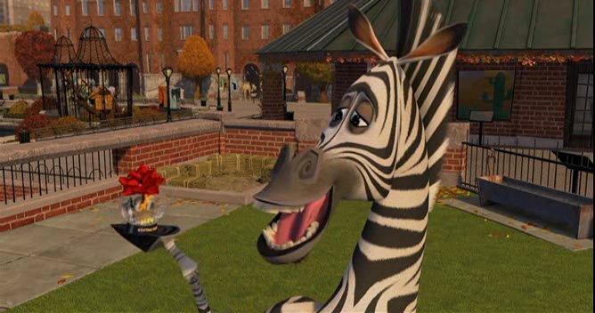 Zebra 8.jpg