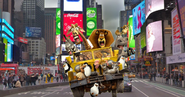 Zoosters Return to NYC