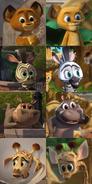 Madagascar Babies (2008-2020)
