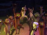 Lemurs (animal group)